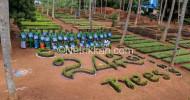 காவேரி கூக்குரல் இயக்கத்தின் மூலம் நடப்பாண்டில் 1.10 கோடி மரக்கன்றுகள் நட திட்டம்!
